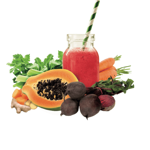 Smoothie packs Horeca