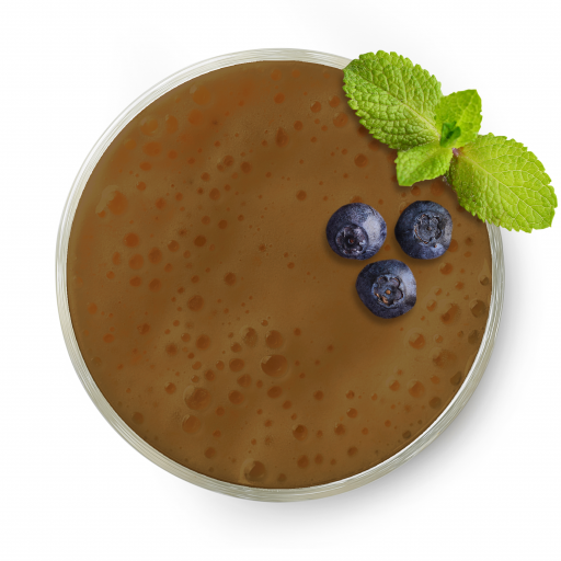 Mayan_Fit-smoothiepack
